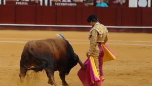 Málaga: Vuelta al ruedo y ovación ante una descastada novillada